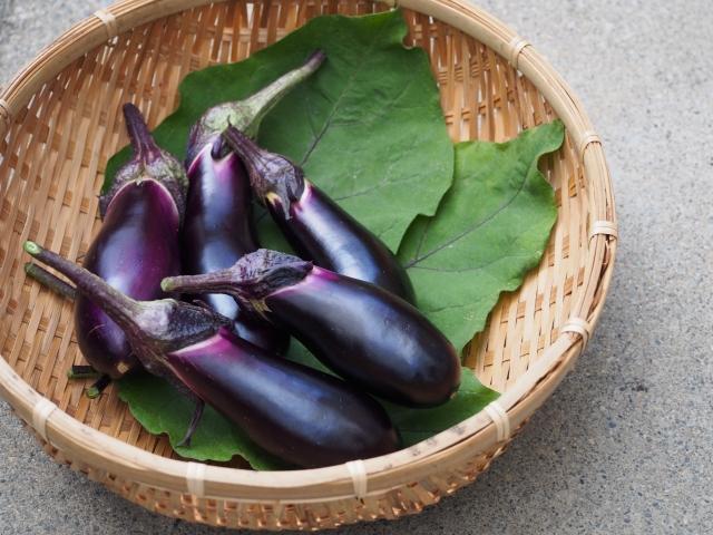 家庭菜園 ナスの栽培方法